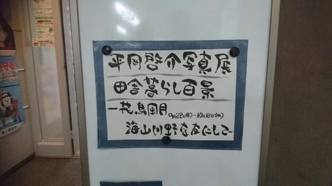 DSC_3460